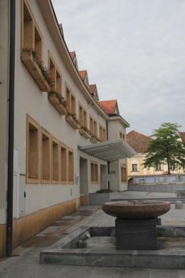 Traiskirchen ist die erste Klimagemeinde Österreichs und will auch Spitzenreiter bleiben. (Foto: RS Media World)